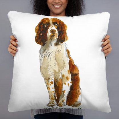 Pillows and Cushions